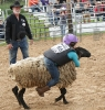 Mutton Bustin' at Rodeo