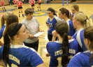 Area high school volleyball teams to start tourney play