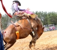 2015 Carney Roundup Rodeo Bronc Riding