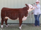 Kathy Hanson and Grand Champion Female Hereford Heifer